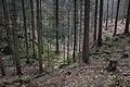 Unterwald-Ponor 09.jpg