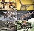 Various dinosaurs hendrickx.jpg