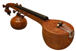 Fundamentals Of Veena