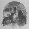 Verne - Clovis Dardentor, Hetzel, 1900, Ill. page 009.png