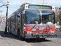 Vicbus-8020.jpg
