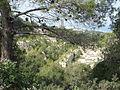 View from Givat Hahagna, Carmel (3).JPG