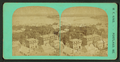 View of Back Bay from City Hall, Portland, Me, by M. F. King 2.png