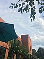 View of the sky under an umbrella.jpg