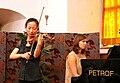 Violinist Litomysl.jpg