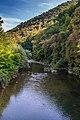 Vlasina reka1.jpg