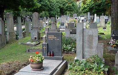 Jak do Vršovický Hřbitov hromadnou dopravou - O místě