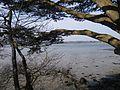Vue sur le golfe du morbihan depuis port blanc - panoramio.jpg