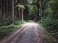 Waldstandort Chleibersmättli.jpg