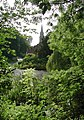 Warter Pond - geograph.org.uk - 900069.jpg
