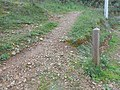 Waymarker post, footpath PR.1 Paderne Castle Watermill 18 December 2015.JPG