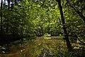 Weiher, Landschaftsschutzgebiet Nagoldtal, Kennung 2.35.037, 03.jpg