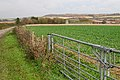 Westover Farm - geograph.org.uk - 91559.jpg