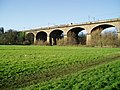 Wharncliffe Viaduct from Brent Meadow - geograph.org.uk - 1068420.jpg