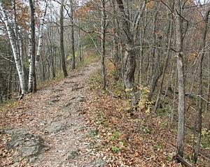 WhitewaterStateParkTrail2010.jpg
