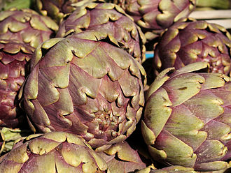 Artichoke - Some varieties of artichoke display purple coloration.