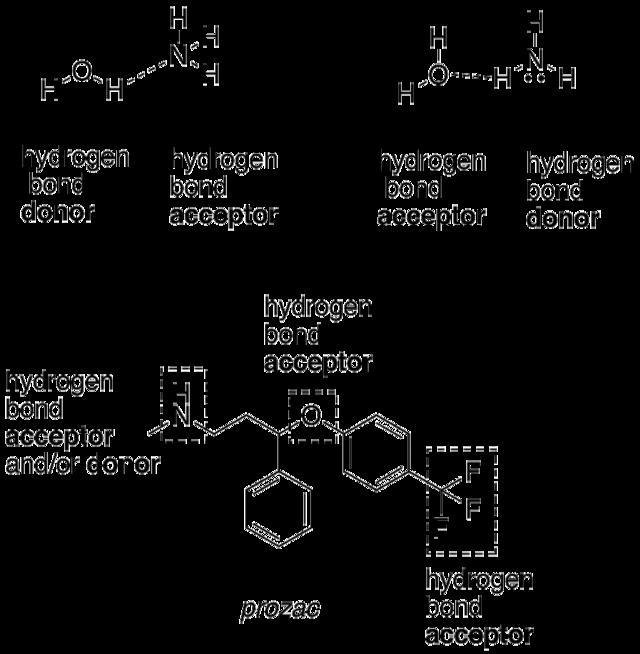 polare elektronenpaarbindung eigenschaften