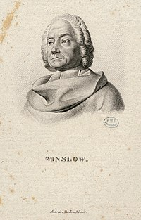 Winslow CIPB1022.jpg