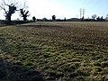 Winter field, Oxfordshire - geograph.org.uk - 1773232.jpg