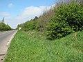 Wisbech and Upwell tramway - Outwell Basin depot - geograph.org.uk - 1261392.jpg