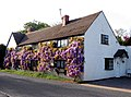 Wisteria Cottage, Marton (2) - geograph.org.uk - 1292438.jpg