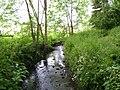 Wom Brook from Rookery Footbridge.JPG