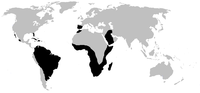 World.distribution.amphisbaenia.1.png