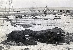 Wikipedia:Featured picture candidates/delist/File:Wounded Knee ...