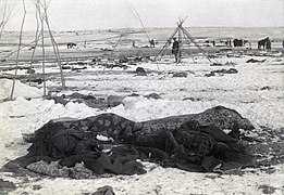 Wounded Knee aftermath5