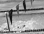 Wounded Warriors Compete in Swimming Preliminaries at 2016 Invictus Games 160507-F-WU507-011.jpg