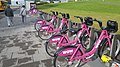 Wow sponsored city bikes in Reykjavik.jpg