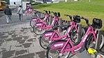 Wow sponsored city bikes in Reykjavik.jpg