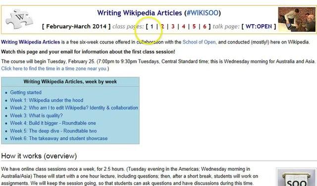 Writing a good wikipedia article