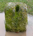 Yeovil Hundred Stone (detail) - geograph.org.uk - 1145506.jpg