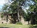 Zamek Stary Książ 08.jpg