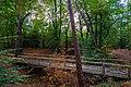 Zeist - park - autumn 2018 (44477686125).jpg