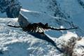 Zermatt (5065266330).jpg