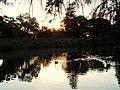 (1)Centennial Park Sunset 011a.jpg