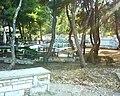 Άλσος Παπάγου Greece.jpg
