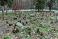 Ботанічний сад ім. акад. Фоміна IMG 4094.jpg
