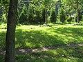 Василеостровский сад01.jpg