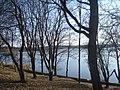 Вид на озеро через деревья весной - panoramio.jpg