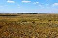Вид с высоты 236,6 в северо-западном направлении - panoramio.jpg