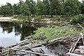 Вид с моста (2008.07.27) - panoramio.jpg