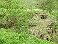 Жнибороди - Хутір Млинки - Руїни млина - 08040299.jpg