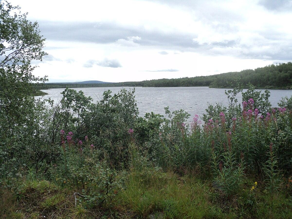 A >> Zapadnaya Litsa River - Wikipedia