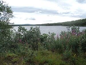 Zapadnaya Litsa River - Image: Западная Лица