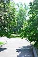 Наводницкий парк в Киеве. Фото 95.jpg