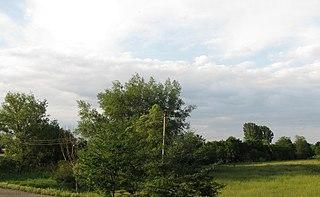 Novoselitsky District District in Stavropol Krai, Russia