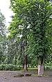 Парк Садиби фон Мекк.jpg